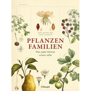 BAYTON, ROSS UND SIMON MAUGHAN Pflanzenfamilien
